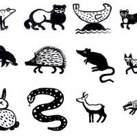 cornish wildlife, first sketches (Cornish earth pigments on paper; 12x(28x28cm)) © p ward 2020