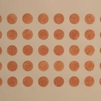 40 dots, Brendon Common (earth pigment; 76x56cm) 2008
