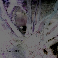 bolden-digital-photo2009
