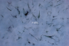 fire-digital-photo2009.jpg