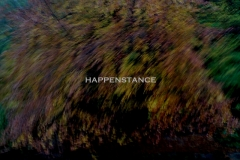 happenstance-digital-photo2009.jpg