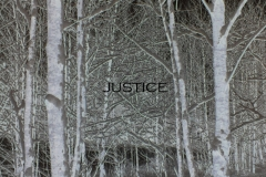 justice-digital-photo2009.jpg
