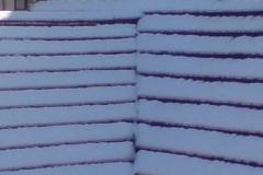 snow-roofs-2digital-photo2009.jpg