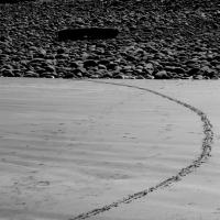 part of a circle, westward ho! (digital photo) © p ward 2010